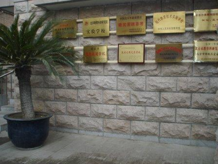 学校荣誉墙