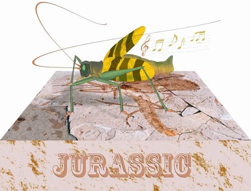 首都师范大学发现并复原了侏罗纪螽斯的鸣叫声